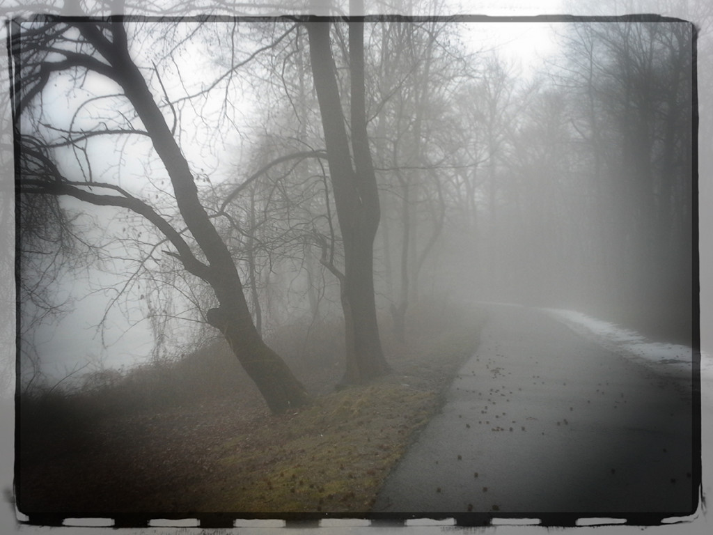Bike Path in the Fog